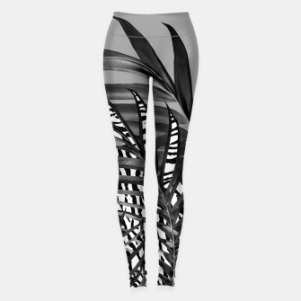 Thumbnail image of Palm Leaves with Tiger Stripe Glam #1 #tropical #decor #art  Leggings, Live Heroes