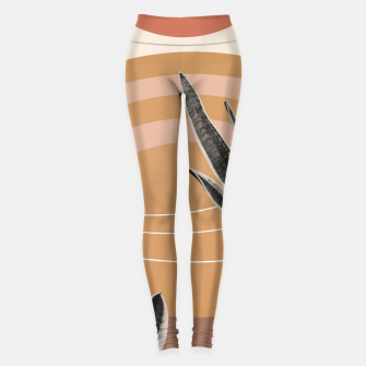 Thumbnail image of Snake Plant in the Desert #2 #tropical #wall #art  Leggings, Live Heroes