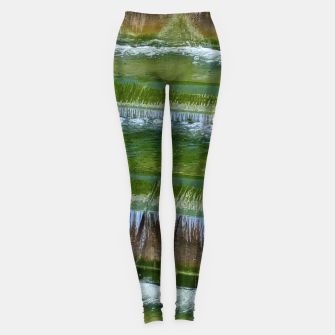 Thumbnail image of greenish Leggings, Live Heroes