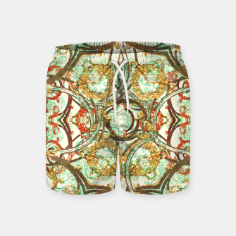 Thumbnail image of Multicolored Modern Collage Print  Swim Shorts, Live Heroes