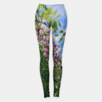 Thumbnail image of wisteria / glicynia Legginsy, Live Heroes
