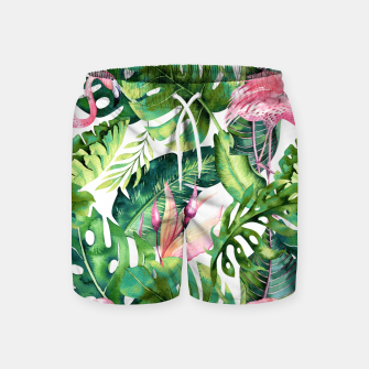 Thumbnail image of Flamingo Tropical II Swim Shorts, Live Heroes