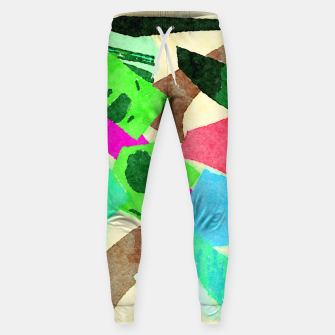 Thumbnail image of On a Plain Sweatpants, Live Heroes