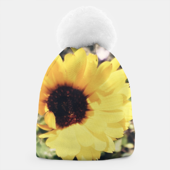 Thumbnail image of Photo Fleurs Marguerites Jaune Bonnet, Live Heroes