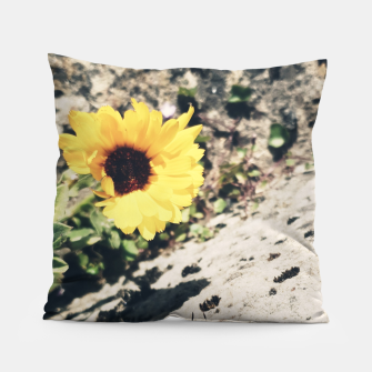 Thumbnail image of Photo Fleurs Marguerites Jaune Coussin, Live Heroes