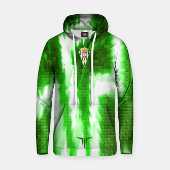 Thumbnail image of Alternative Córdoba Energy Green Sudadera con capucha, Live Heroes
