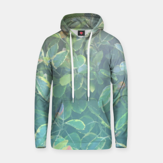 Thumbnail image of foliage_ficus benghalensis variegated Hoodie, Live Heroes