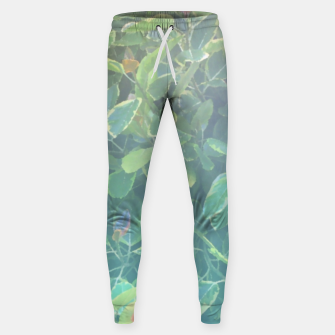 Thumbnail image of foliage_ficus benghalensis variegated Sweatpants, Live Heroes