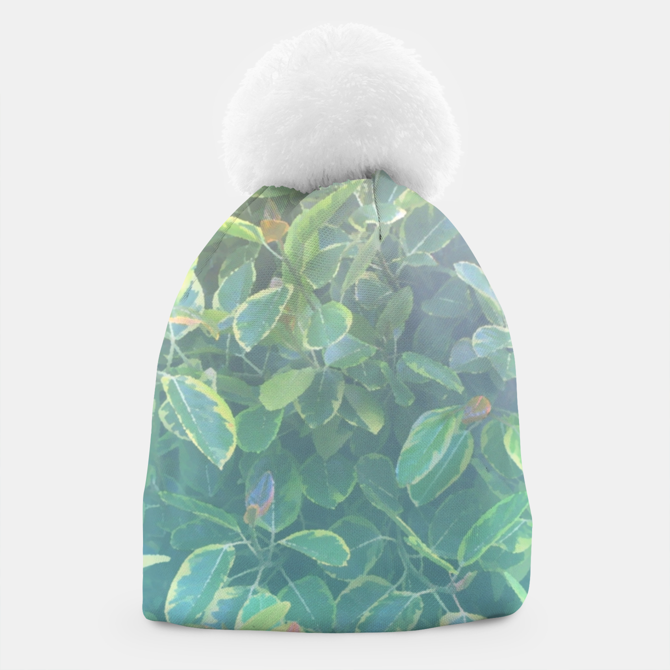 Image of foliage_ficus benghalensis variegated Beanie - Live Heroes