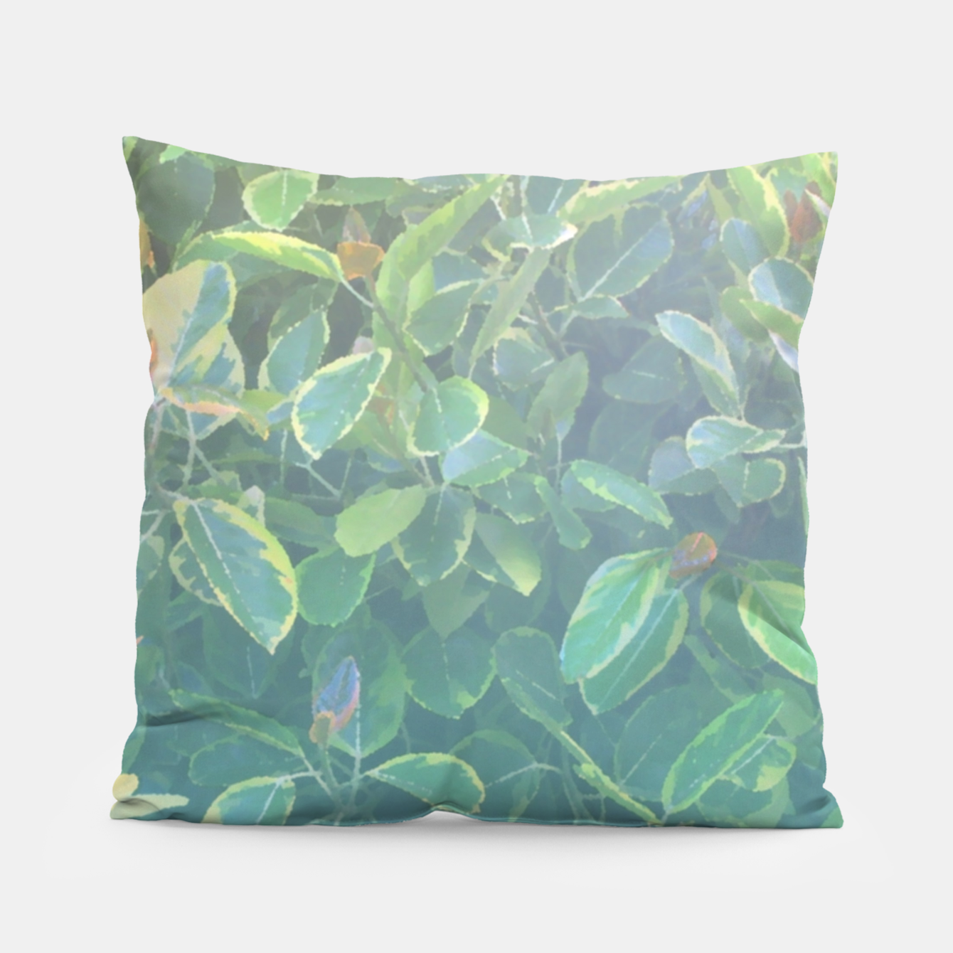Image of foliage_ficus benghalensis variegated Pillow - Live Heroes