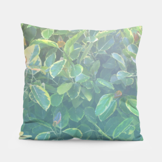 Thumbnail image of foliage_ficus benghalensis variegated Pillow, Live Heroes
