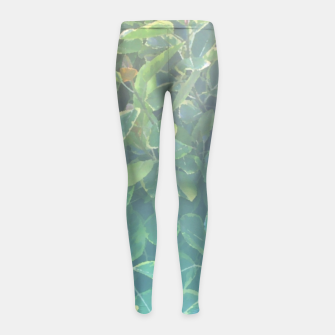 Thumbnail image of foliage_ficus benghalensis variegated Girl's leggings, Live Heroes