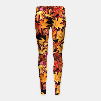 Thumbnail image of Fall Leaves Pattern Girl's leggings, Live Heroes
