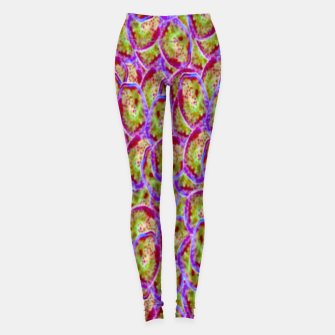 Miniatur Jelly Leggings, Live Heroes
