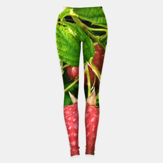 Thumbnail image of raspberries Legginsy, Live Heroes
