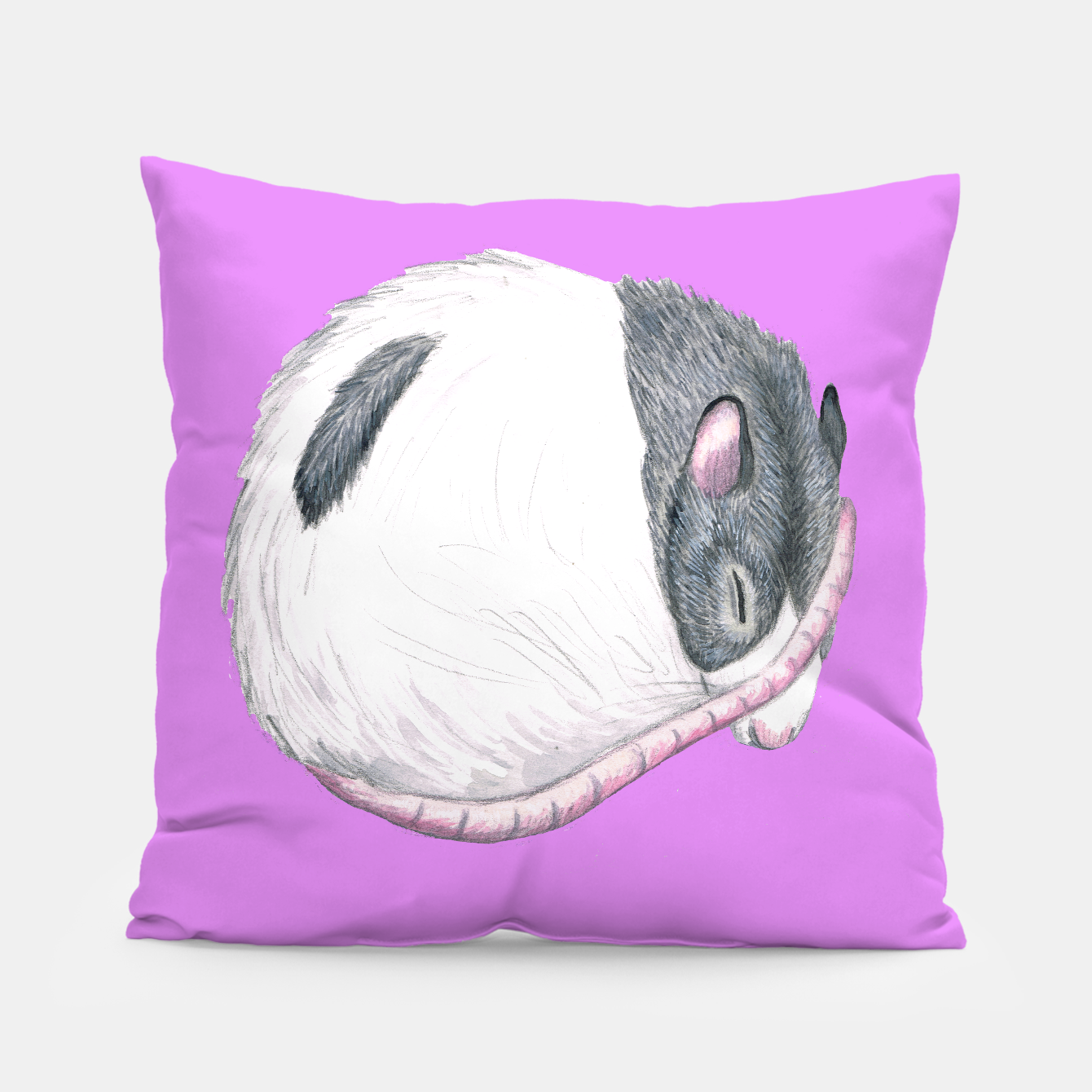 Image of rat sleeping painting, purple background, cushion - Live Heroes