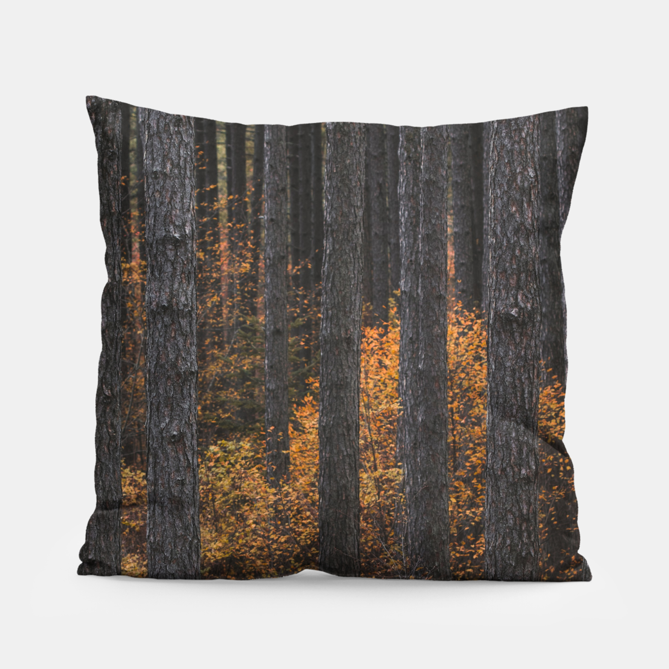 Zdjęcie Trees and gold autumn foliage Pillow - Live Heroes
