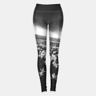 Thumbnail image of Narcissus flowers on mountain Golica, Slovenia Leggings, Live Heroes