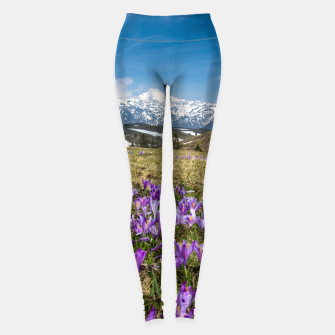 Thumbnail image of Mountains and crocus flowers on Velika Planina, Slovenia Leggings, Live Heroes