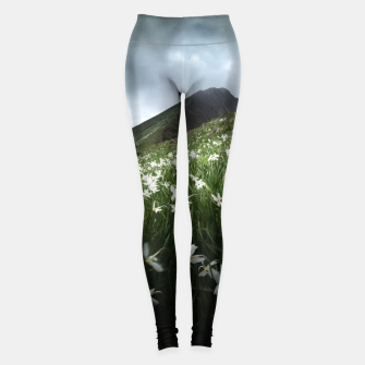 Miniatur Mountain Golica and Narcissus flowers Leggings, Live Heroes