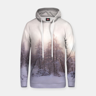 Miniature de image de Sunlight and spruce forest Hoodie, Live Heroes