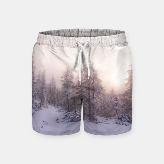Miniature de image de Sunlight and spruce forest Swim Shorts, Live Heroes