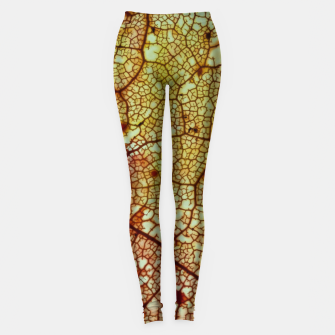Thumbnail image of leafstructure orange Leggings, Live Heroes