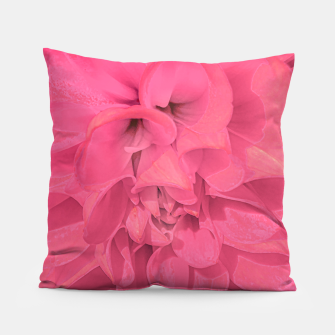 Thumbnail image of Beauty Pink Rose Detail Photo Pillow, Live Heroes