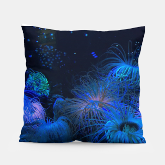 Thumbnail image of Photo d'aquarium Coussin, Live Heroes