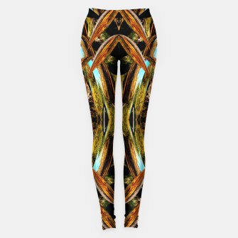 Thumbnail image of Abstraction in autumn colors Leggings, Live Heroes