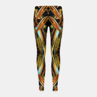 Thumbnail image of Abstraction in autumn colors Girl's leggings, Live Heroes