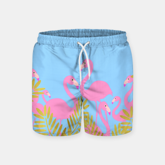 Thumbnail image of Flamingos In The Tropics Swim Shorts, Live Heroes