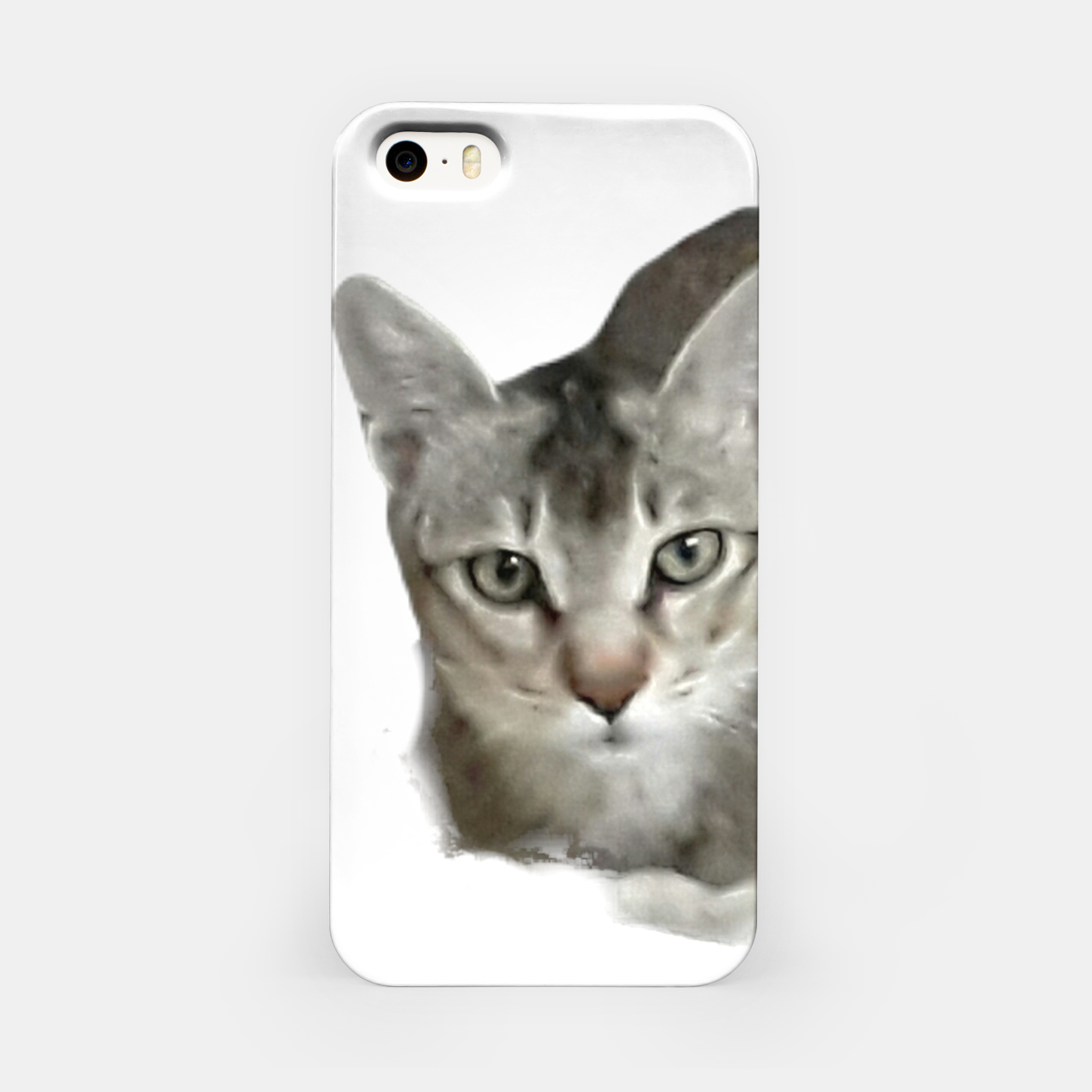 Image of THAT FACE Cute Kitten Abyssinian iPhone Case - Live Heroes