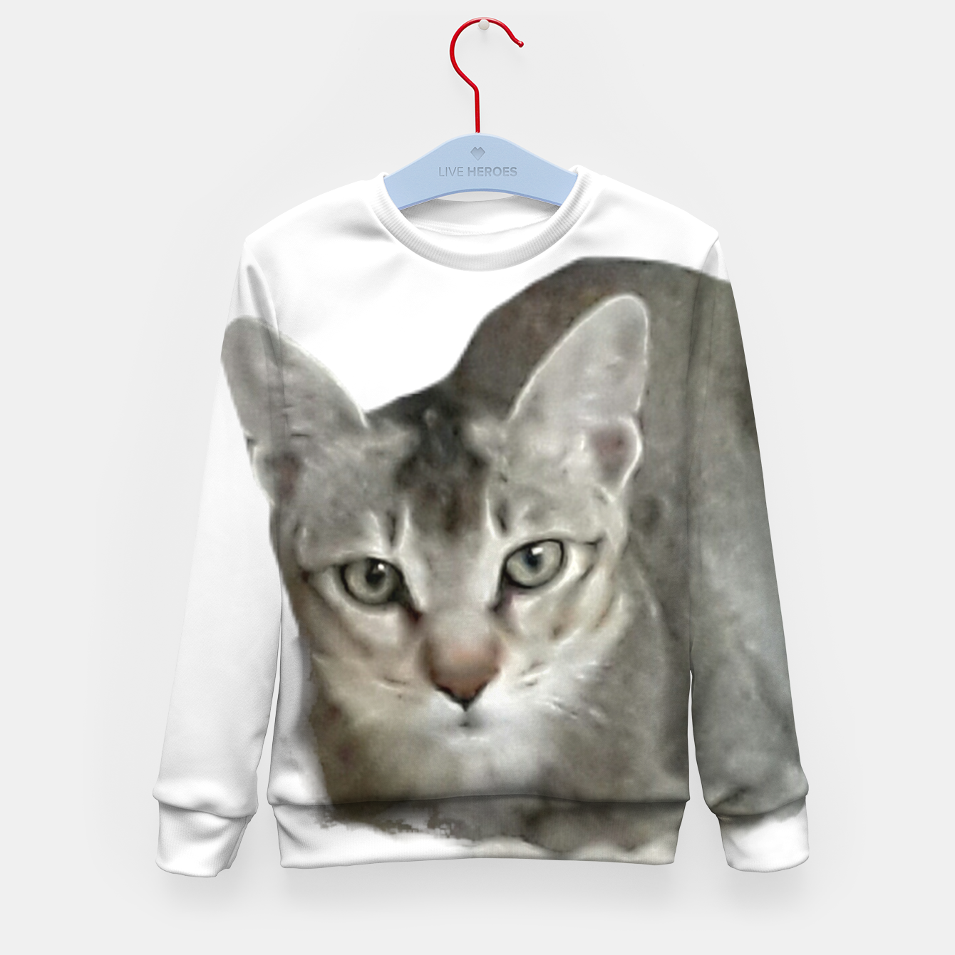 Image of THAT FACE Cute Kitten Abyssinian Kid's sweater - Live Heroes