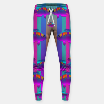Miniatur tropical rainbow fishes  in meadows of seagrass Sweatpants, Live Heroes