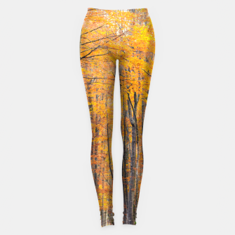 Thumbnail image of Stunning gold autumn forest Leggings, Live Heroes