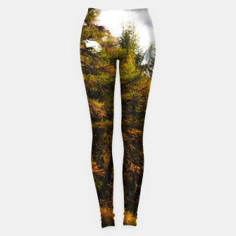 Thumbnail image of Golden European larch in autumn colors Leggings, Live Heroes