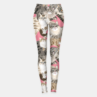 Miniaturka Cats Paradise Pattern Rose Pink Leggings, Live Heroes