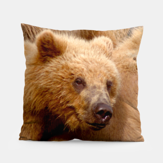 Thumbnail image of Brown Bear Pillow, Live Heroes