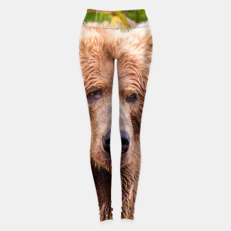 Thumbnail image of Brown Bear Leggings, Live Heroes