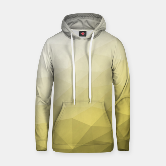 Ultimate Gray Illuminating Gradient Geometric Mesh Pattern Hoodie thumbnail image