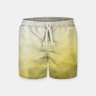 Ultimate Gray Illuminating Gradient Geometric Mesh Pattern Swim Shorts thumbnail image