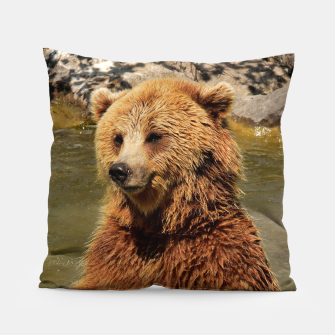 Imagen en miniatura de Brown Bear Pillow, Live Heroes