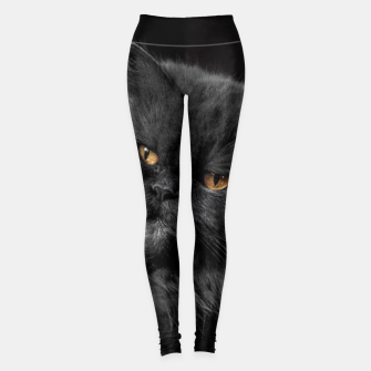 Thumbnail image of Angry Black Cat Leggings, Live Heroes