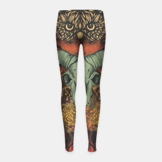 Miniaturka Horns Shrine Girl's leggings, Live Heroes