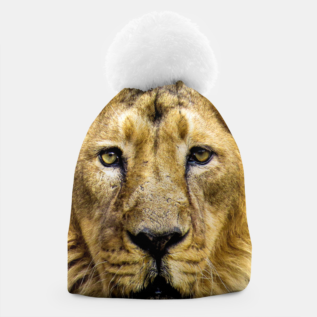 Image of Face of Lion Beanie - Live Heroes