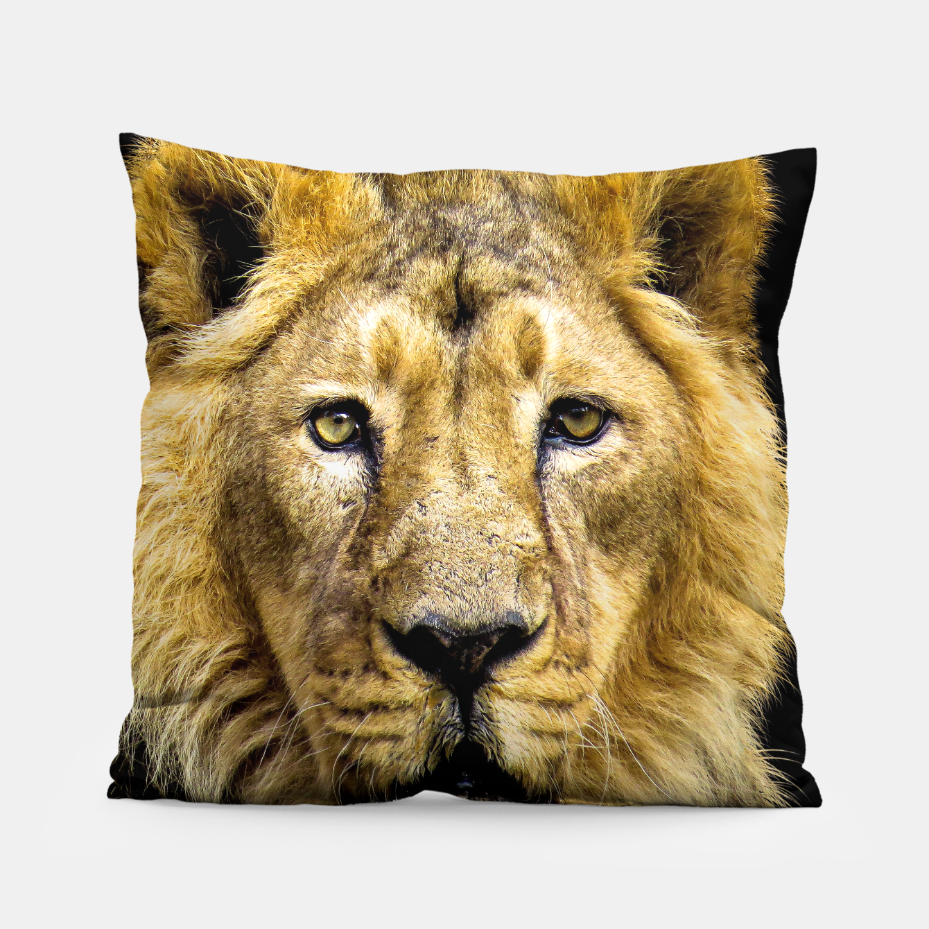 Image of Face of Lion Pillow - Live Heroes