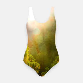 Thumbnail image of green pine tree with sunlight at Lake Tahoe, Nevada, USA Swimsuit, Live Heroes