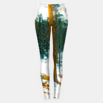 Miniature de image de green pine tree in winter with snow at Palm Springs Aerial Tramway, California, USA Leggings, Live Heroes