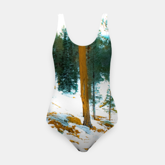 Miniature de image de green pine tree in winter with snow at Palm Springs Aerial Tramway, California, USA Swimsuit, Live Heroes